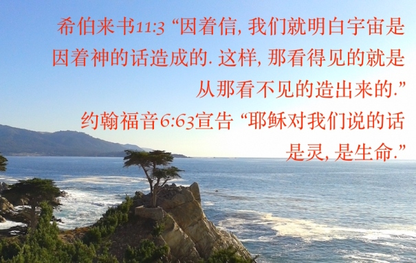 Image result for 相信神就是相信神差遣耶稣基督到世上来,赐给我们丰盛的新生命(加5:22)。