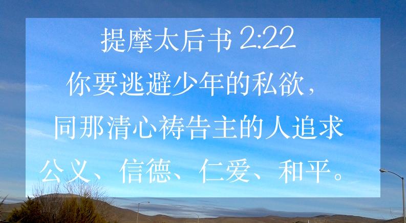 Image result for (提后2: 22)。