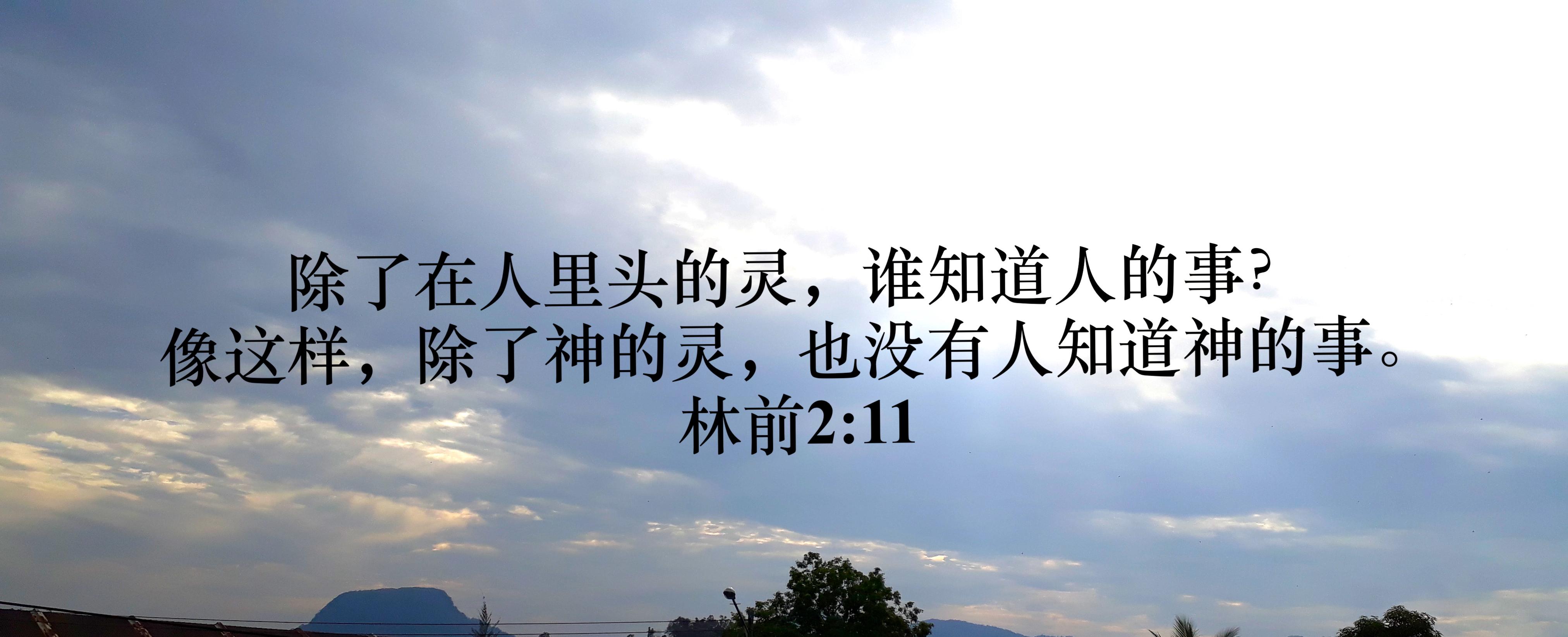 Image result for 我们自己是无法自我重生的,没有任何人能自我重生﹐虽然他听了和接受了神的话﹔圣灵借上帝的话得着人心。这些事通常是在听道的人重生之前发生。